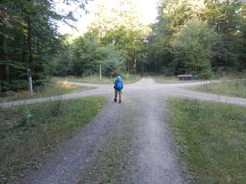 Viele Wege führen nach Rom oder nach Stettin