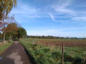 in Richtung Urexweiler