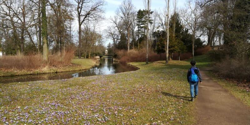 Das Gartenreich Wörlitz