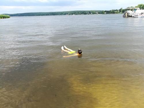 Erfrischung im Templiner See