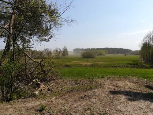 Sandstrum kurz vor Biesenthal