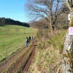 Waldsaumweg